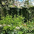 Windows-Live-Writer/Joli-printemps-au-jardin-_601C/20170402_133737_2