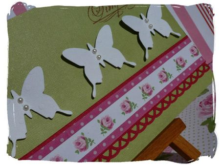 Papillons-Toga6