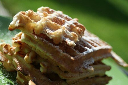 gaufre_epeautre
