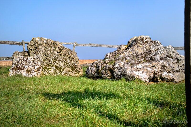 Bas Poitou Monument mégalithique de Pierre-Virante à Xanton-Chassenon (11)