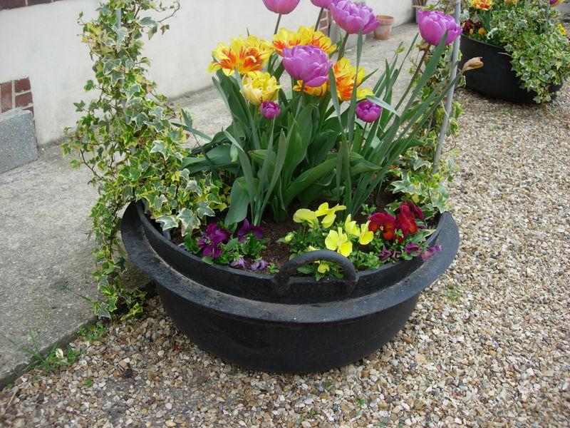 vasque fleurie - Photo de Jardin et fleurs - C\'Beaucépatch