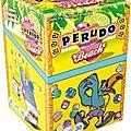 Boutique jeux de société - Pontivy - morbihan - ludis factory - Perudo beach