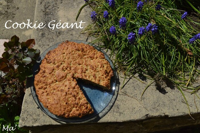 150406_cookie_geant