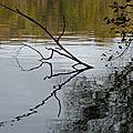 20141108 mine d'A étang reflet1