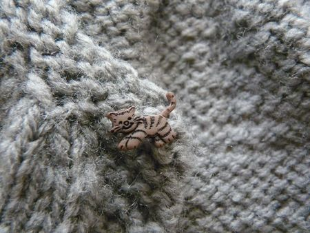 tricot___2010_11_26___little_Kina_pour_Rose__detail_bouton_