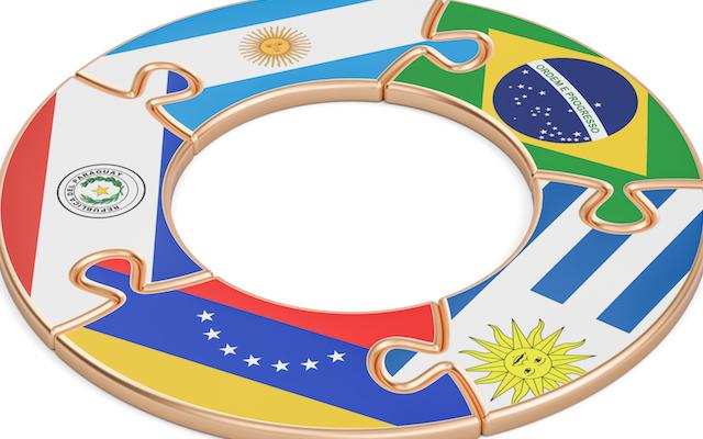 mercosur-les-professionnels-francais-de-la-viande-en-appellent-au-president