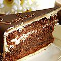 Mon top 10 les gâteaux: n°8: la sacher torte (vienne, autriche)