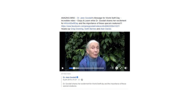 Jane Goodall_video capture