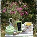 Petite invitation pour un thé dans le verger # recette du thé glacé