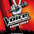 « the voice tour 2014 » - quels artistes assureront les premières parties ?