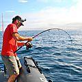pêche aux thons rouge (22)