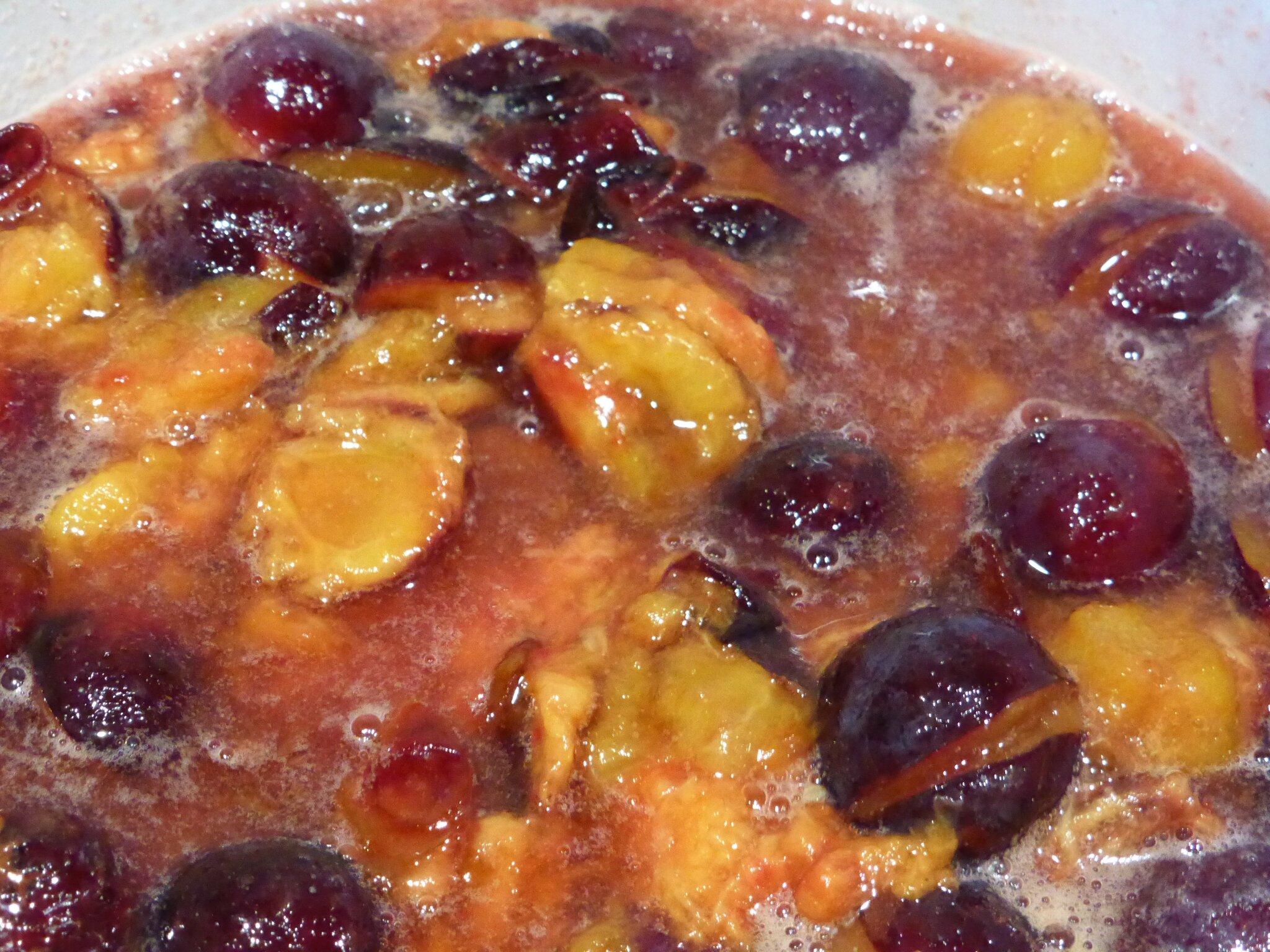 20-prunes (9)