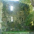 Fortification du châteaude rochefort en Terre.