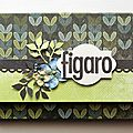 mini album figaro 14/2/2012