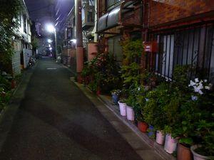 Canalblog_Tokyo03_09_Avril_2010_065