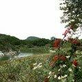 16 - Parque Tierra de Fuego (8)