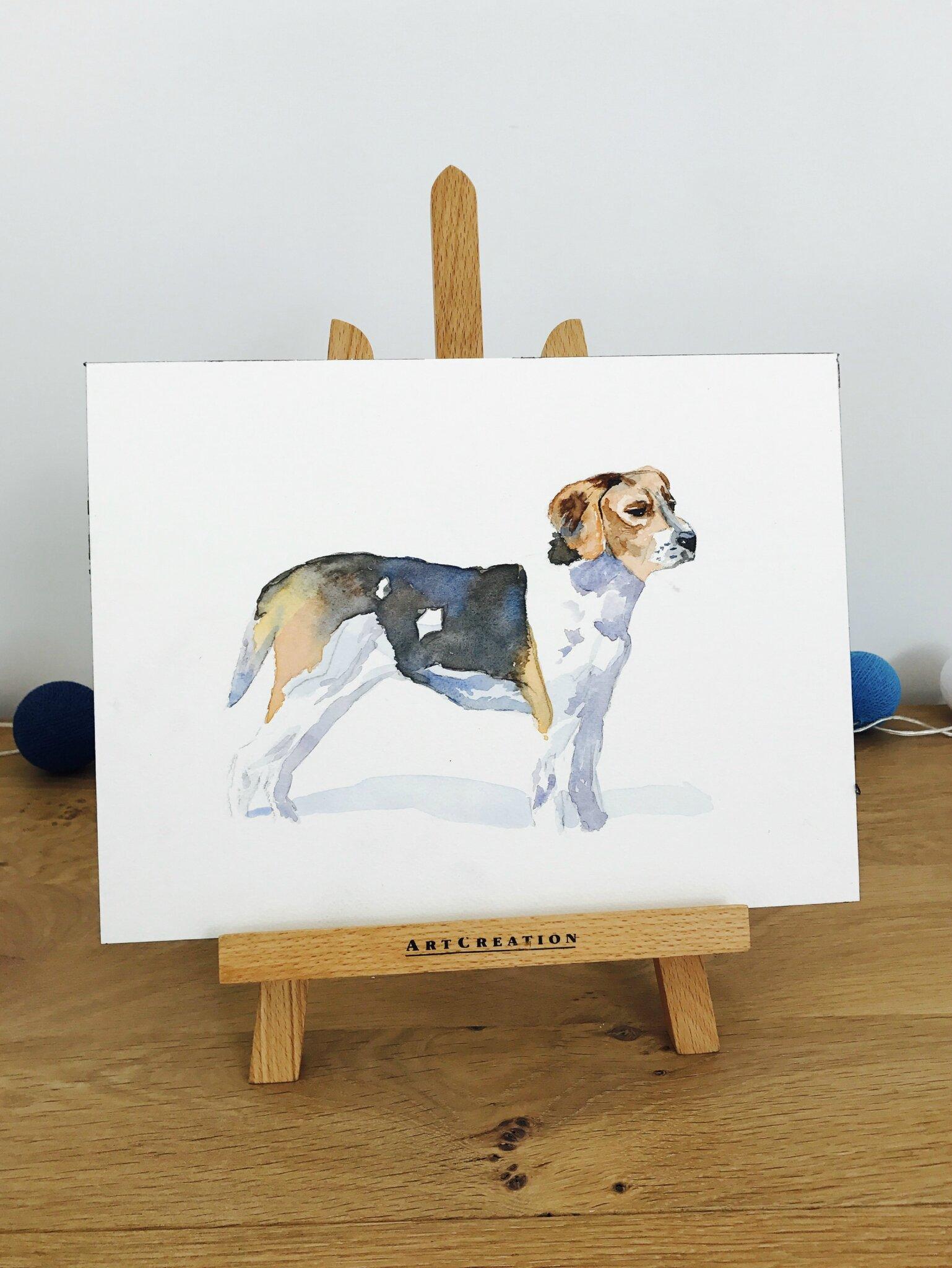Aquarelle : le beagle