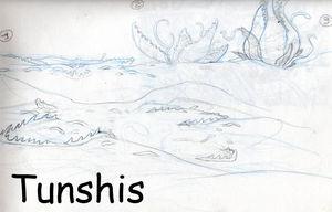 Tunshis