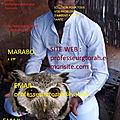 Marabout africain serieux puissant : rituel retour affectif rapide