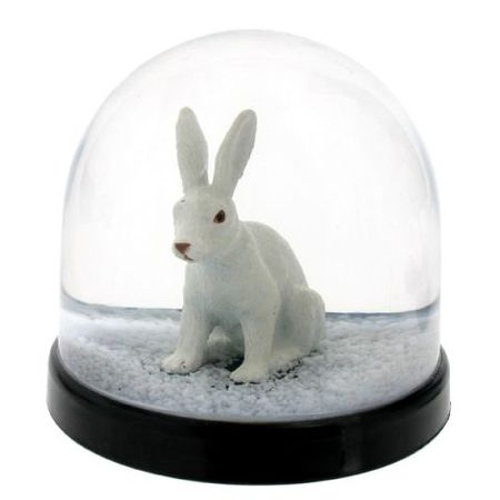wonderball_white_rabbit
