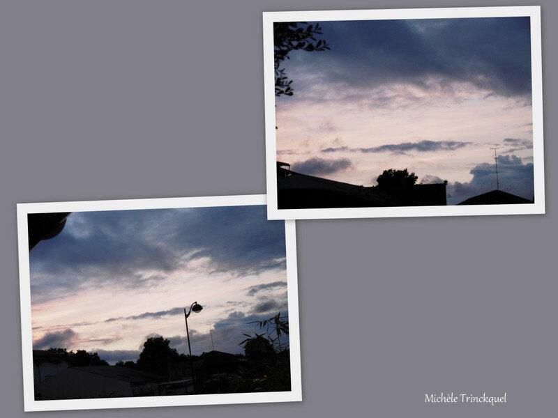 Lever de soleil, Yucca et Plumbago 240818