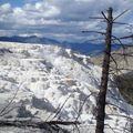 1 Yellowstone