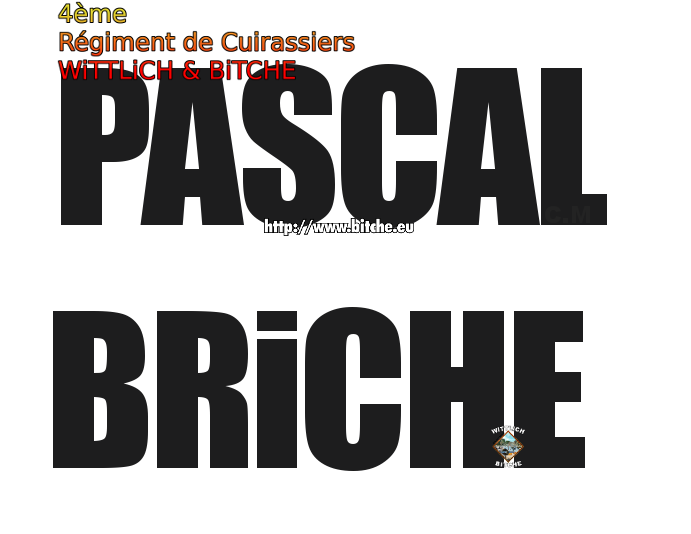 ♞BRiCHE PASCAL