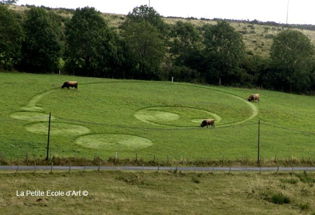 Signs by Cows Aubrac France
