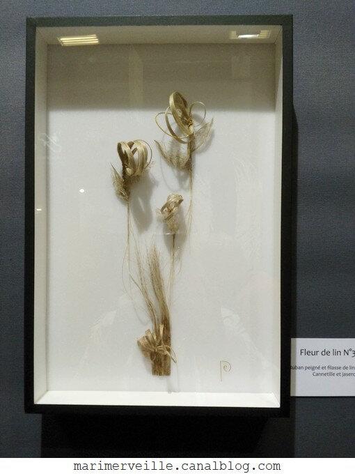 fleur de lin Emmanuelle Dupont 3 - AEF 19 - marimerveille