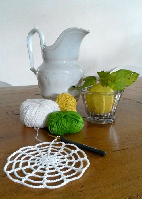 nature morte et wip crochet anisbee