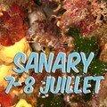 Sanary juillet 07