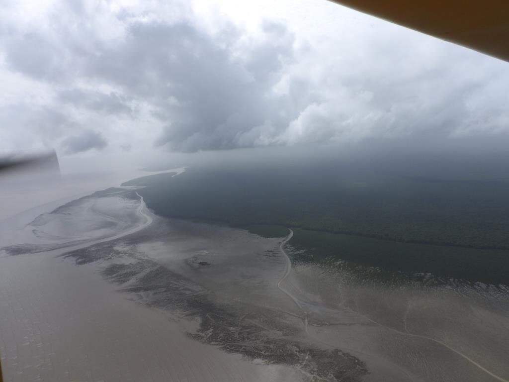 Estuaire marais de Kaw