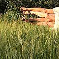 Des aimants dans les blés 5 Marc