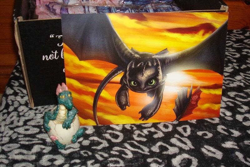 FairyLoot_Dragons 06