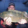 Rockfishing en bigoudénie
