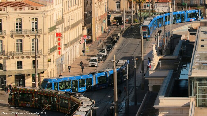 Photos JMP©Koufra 12 - Montpellier tramway - 17112015 - 00015 blog