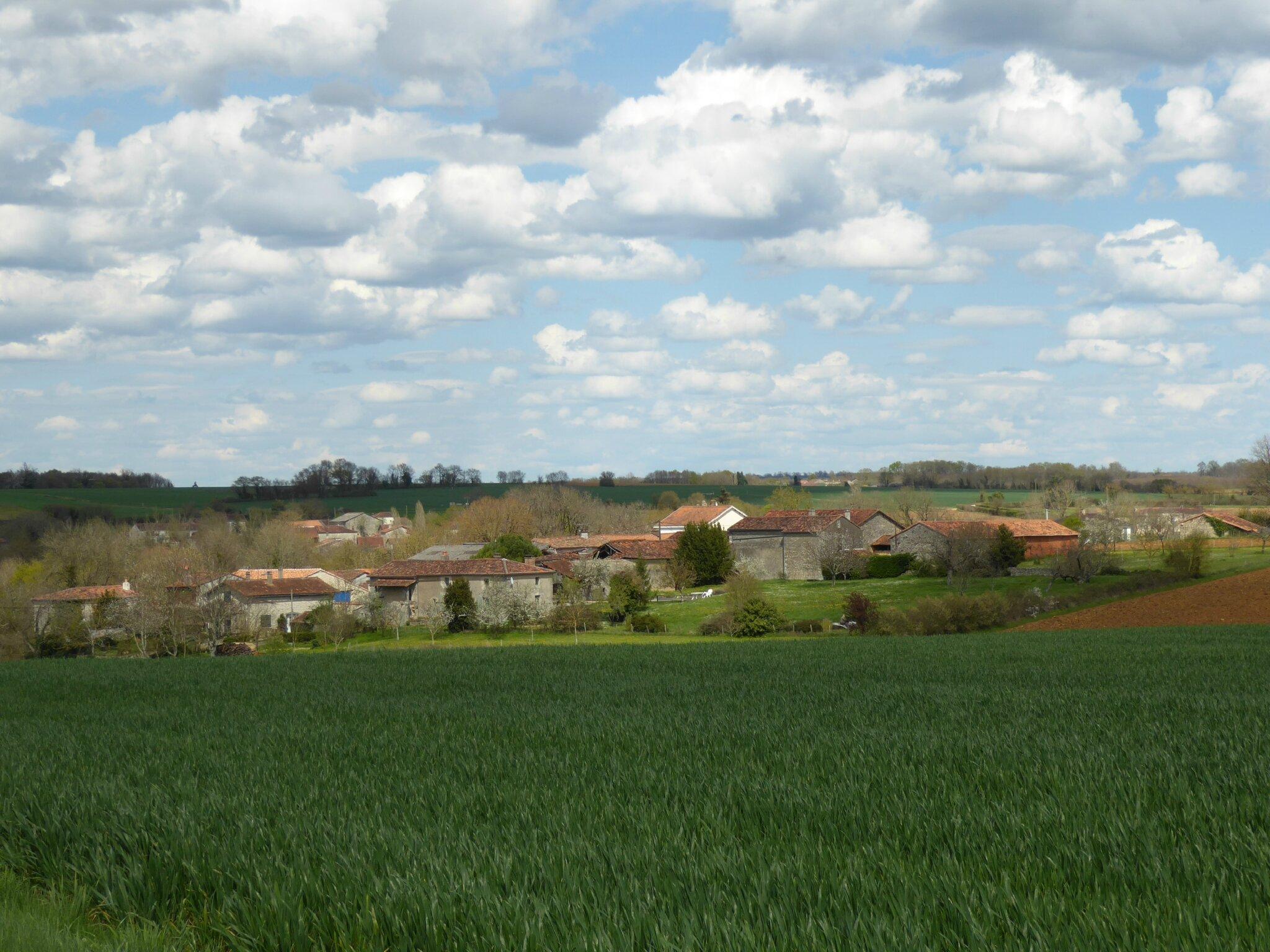 Toujours vers Mouton,en Charente.