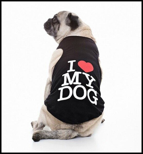 i love my dog debardeur chien 1