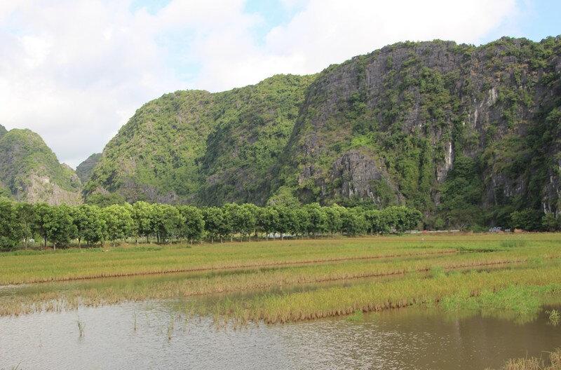 Baie d'Halong terrestre 11