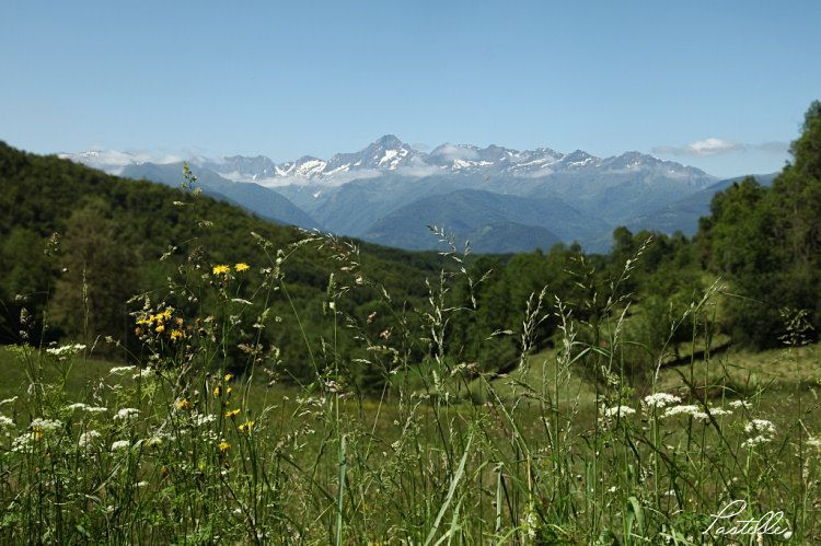 mont750_IMG_2362