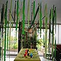 Le salon transformé en jungle!