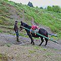 Proposition mule au pair - rhône-alpes