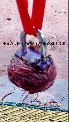 IMG_20210617_041749_resized_20210617_041839548