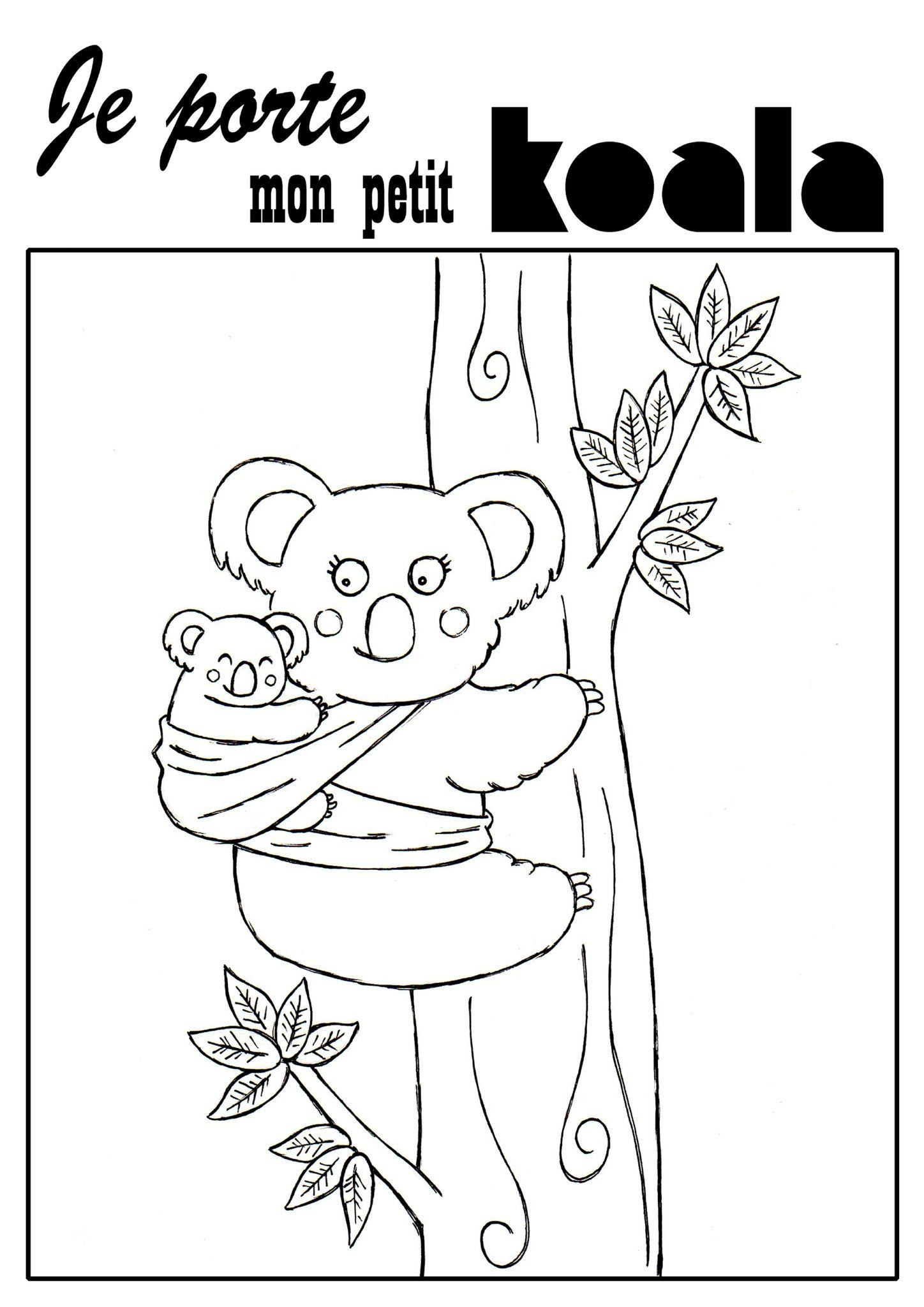 Coloriage Koala Paternage