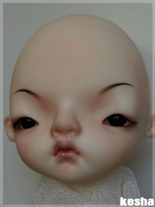 domadoll cooki3