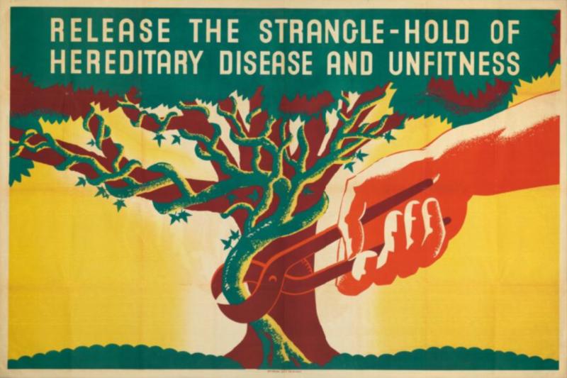 2021-09-04 22_41_15-Eugenics_Society_Poster_(1930s)