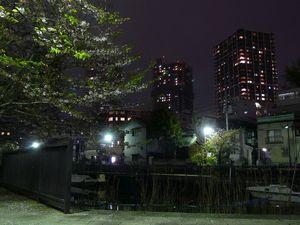 Canalblog_Tokyo03_15_Avril_2010_078