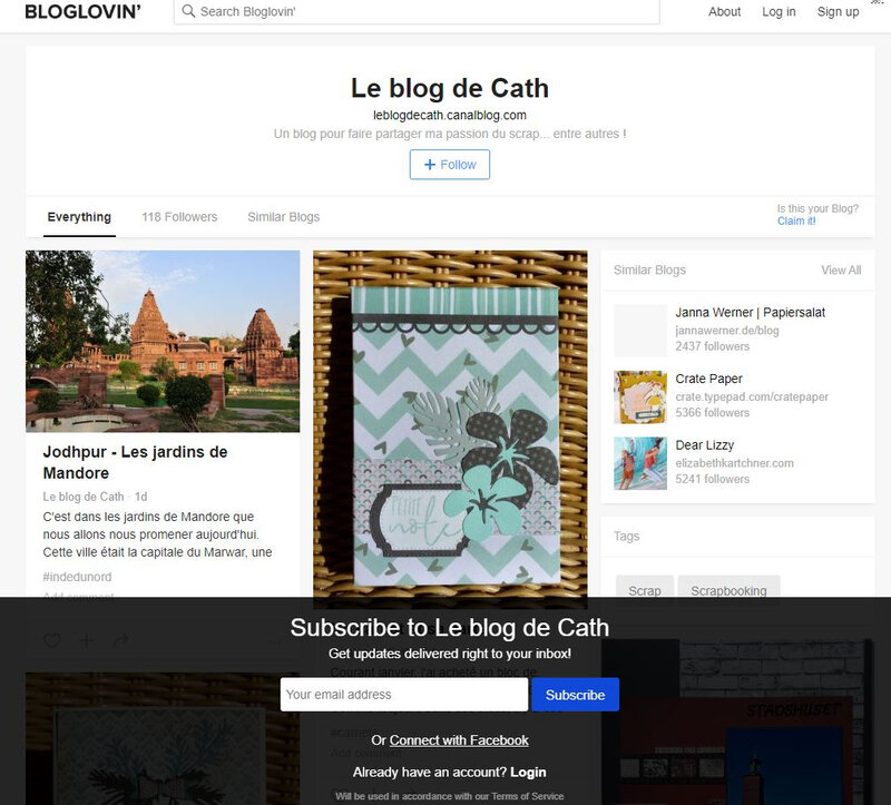 Capture-bloglovin
