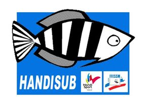 BASE Logo Handisub copie