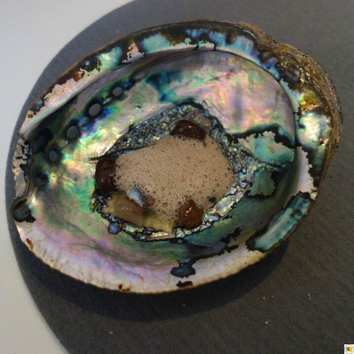 Autour de l'anchois (1)